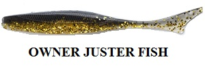 Owner Juster Fish