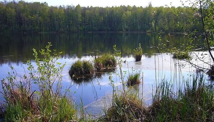 тамбовская область озеро ильмень рыбалка