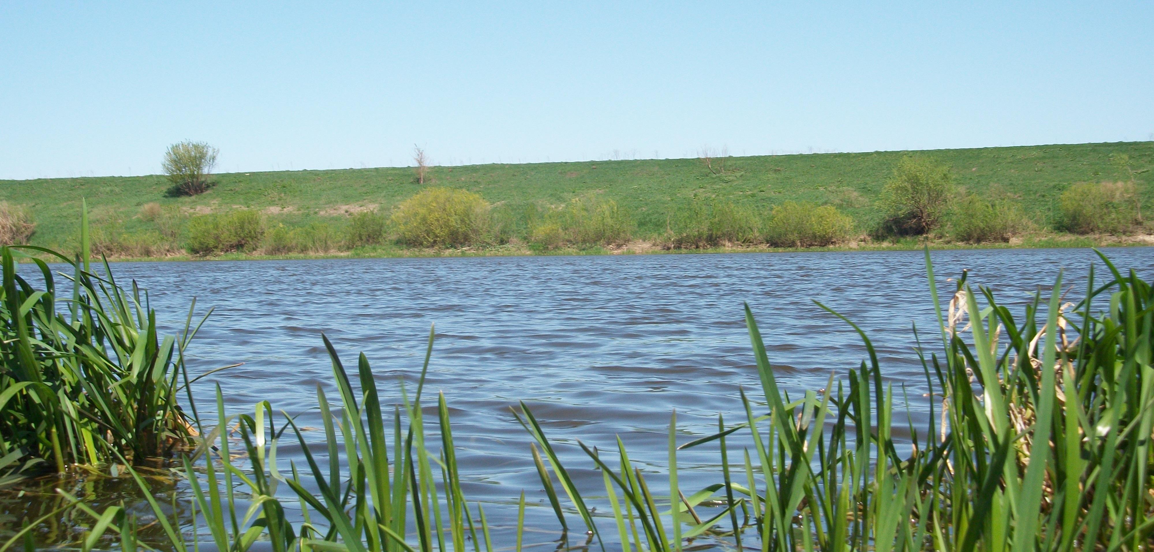 рыбная ловля на реке дон липецкая область
