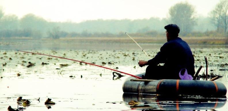 ловля крупного карася на маховую удочку видео