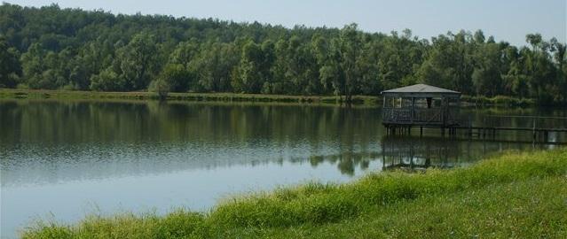 платные пруды для рыбалки в ульяновске