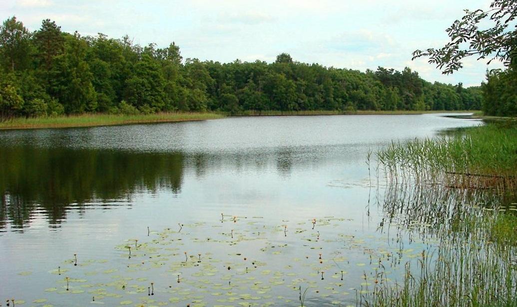 рыбалка на реках и озерах в псковской области