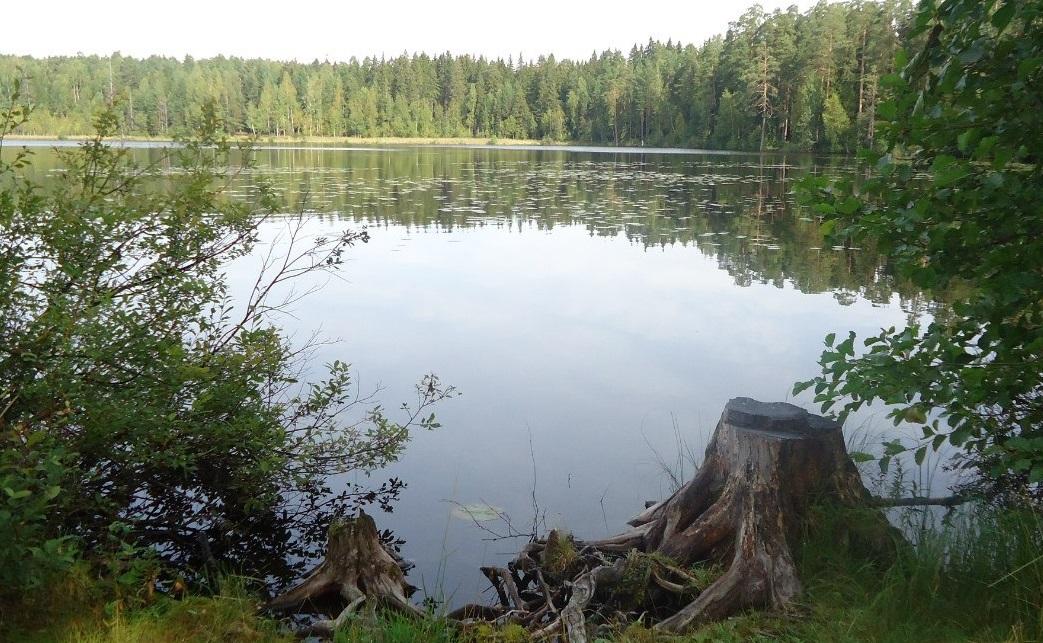 Озера ленинградская область рыбалка