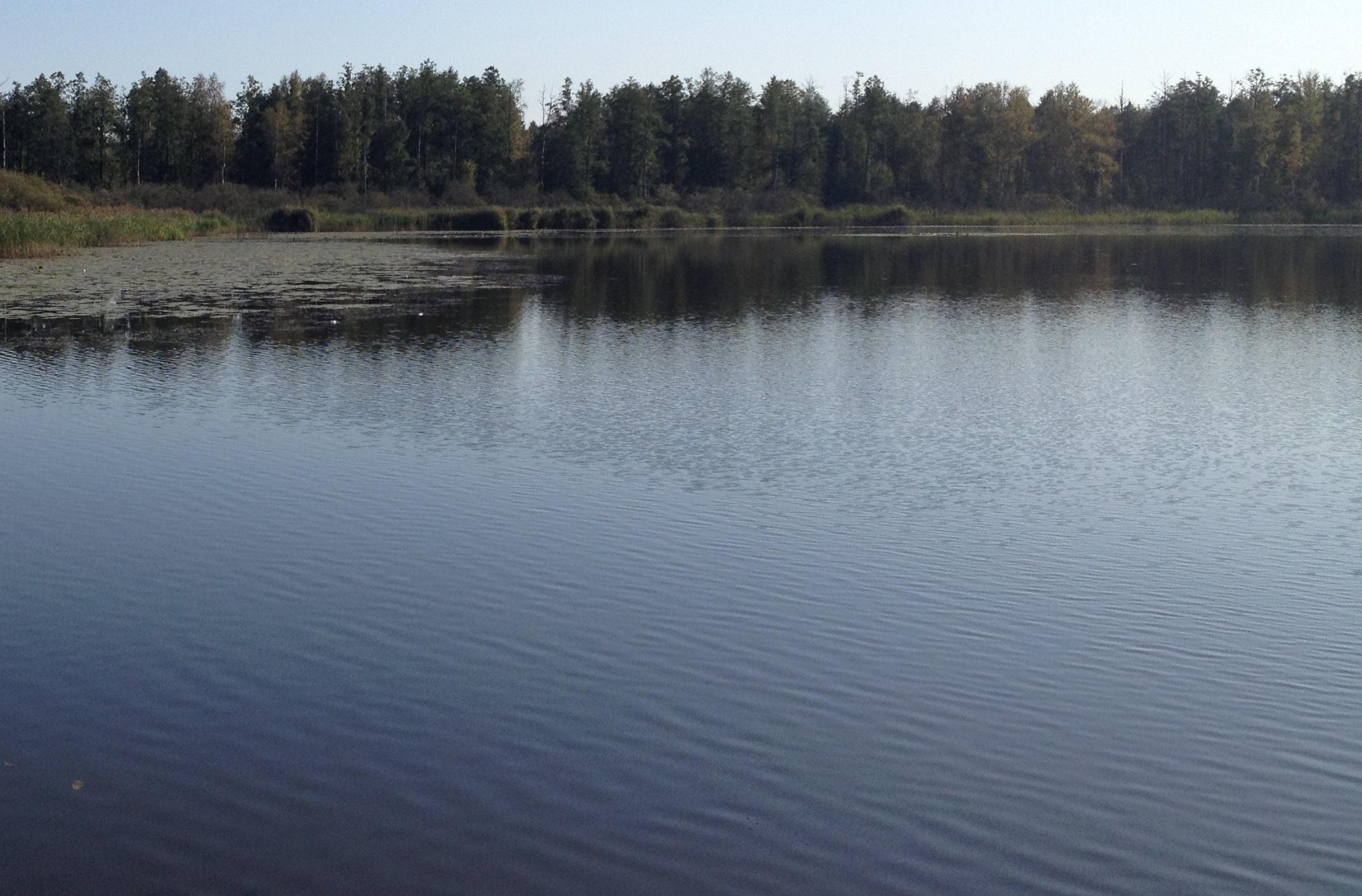водоемы брянской области рыбалка