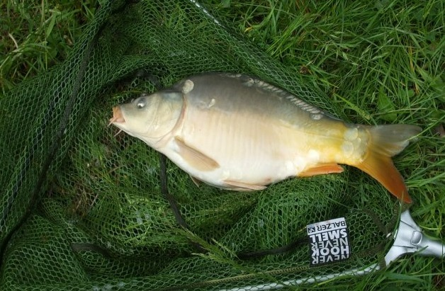 прогноз рыбалка в калужской области