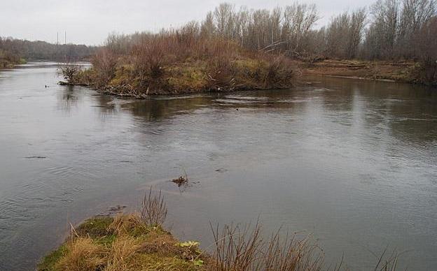сайт бузулукских рыболовов