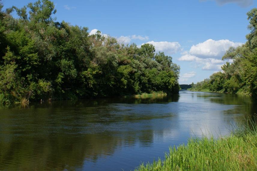 река карповка волгоградская область рыбалка