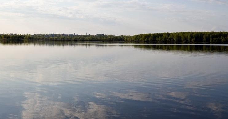 рыбалка шварцевский пруд
