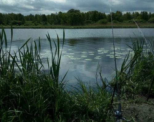 рыбалка в полесском районе в калининградской области