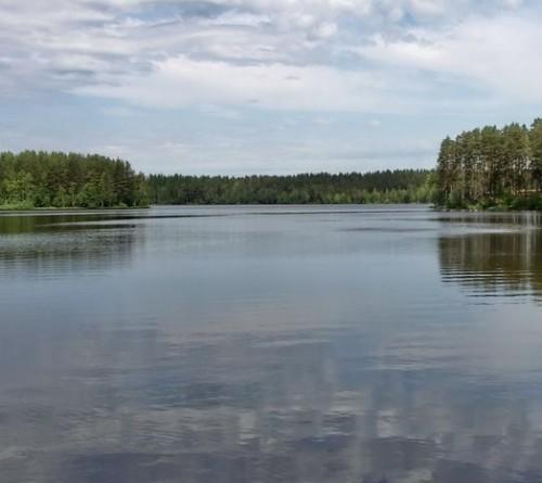 рыбалка в ленинградской области кошкино