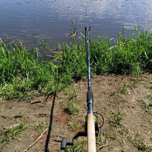 снасть для рыбалки на волге видео
