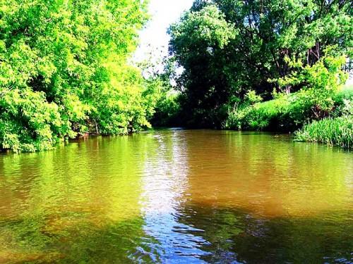 реки воронежской области для рыбалки