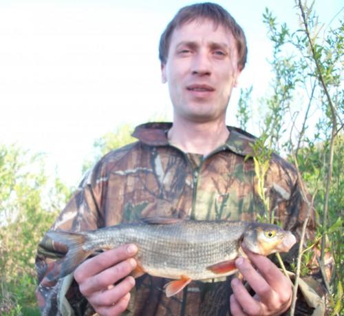 щелковская рыбалка форель